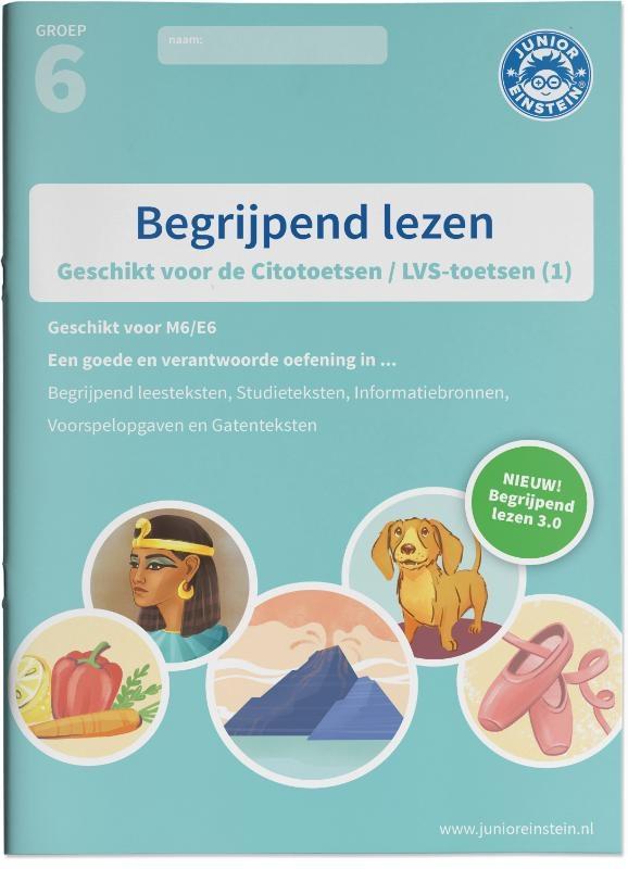 Begrijpend lezen groep 6 - Oefenboek 1 - M6/E6