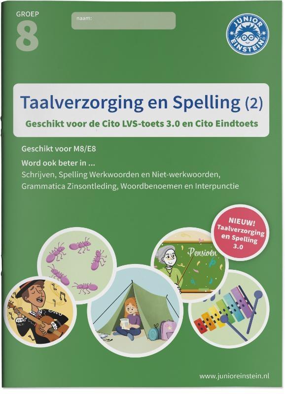 Taalverzorging en Spelling Cito Oefenboek 2